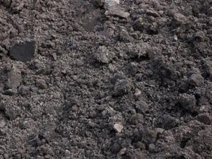Zwarte grond tuinaarde