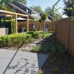 Gerealiseerde strakke groene tuin