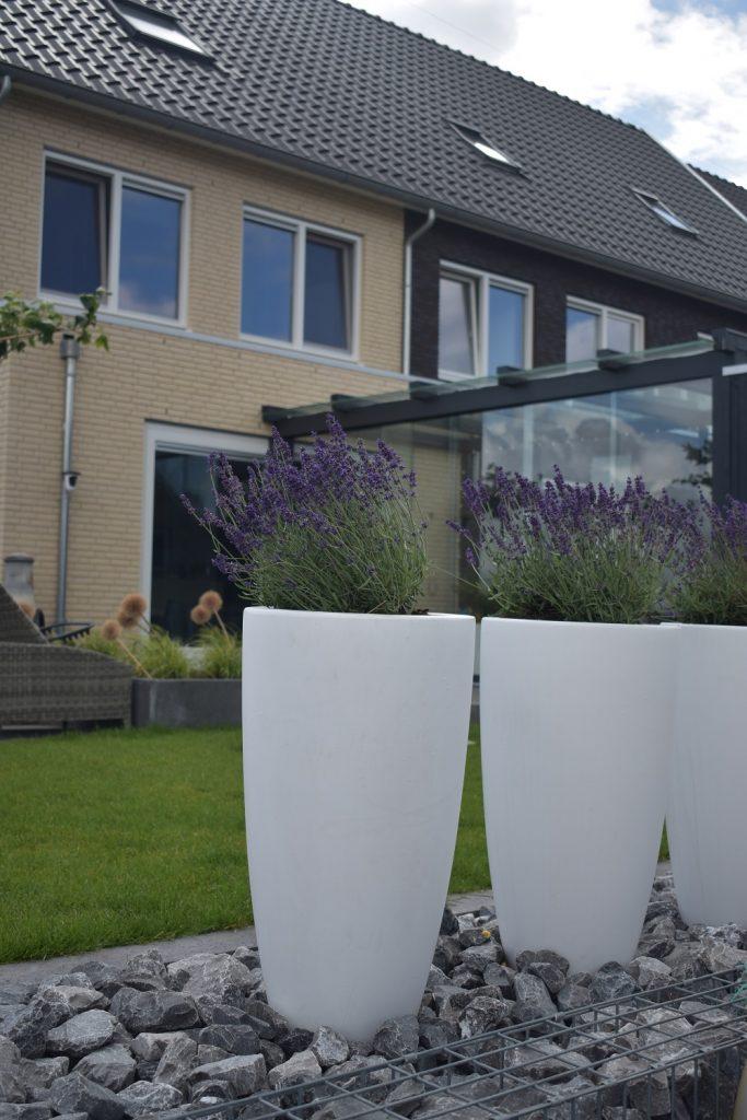 Ook kunstof bloempotten kunnen wij leveren bij Totaal Bestrating