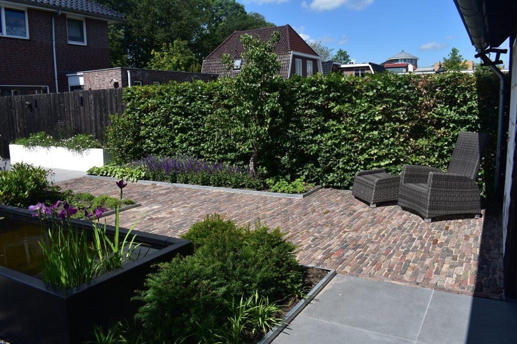 Landelijke tuin met oud gebakken waalformaat, beukenhaag en grijze keramische tegels