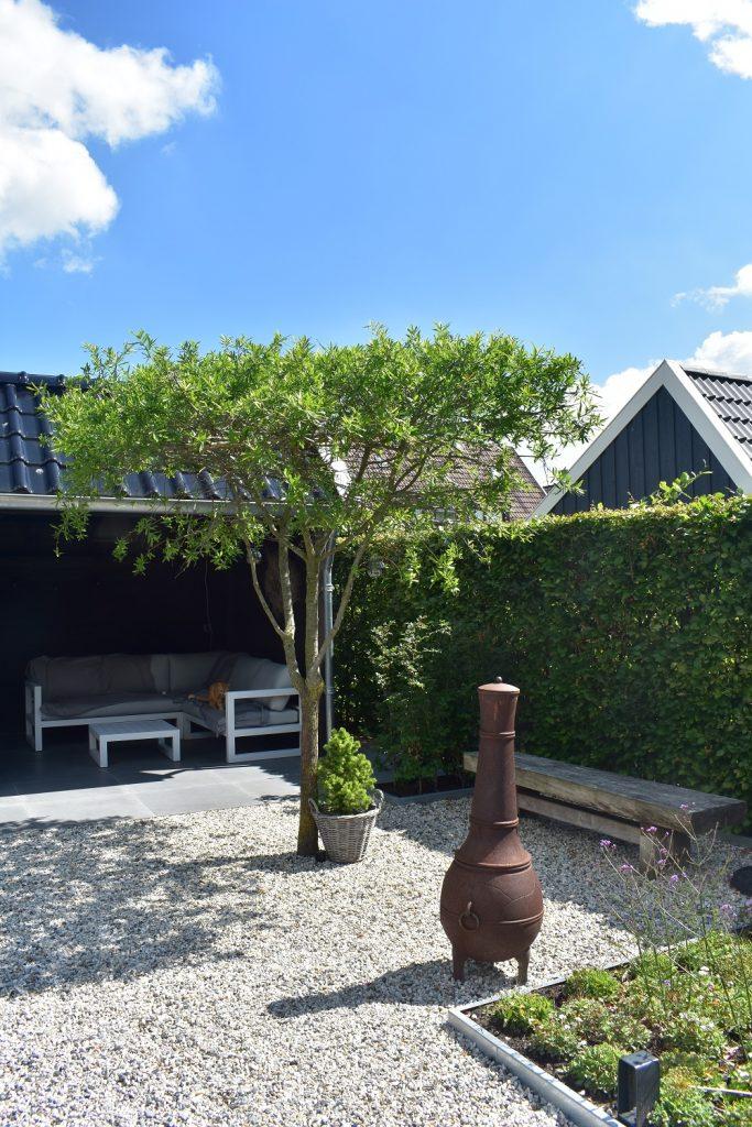 Landelijke tuin in Joure met wit grind, dakplataan, veel groen en een Douglas kapschuur
