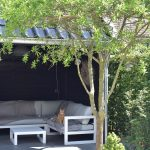 Landelijke tuin in Joure met wit grind, GeoCeramica, Douglas kapschuur en een dakplataan