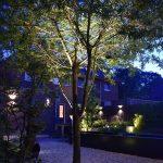 in-lite verlichting onder boom