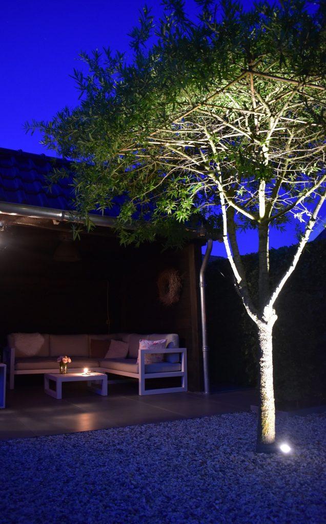 in-lite verlichting onder boom door Totaal Bestrating Drachten