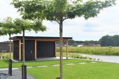 Nieuwbouw project Boornbergum