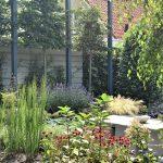 Diverse beplanting in achtertuin